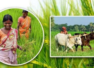 Agriculture bd